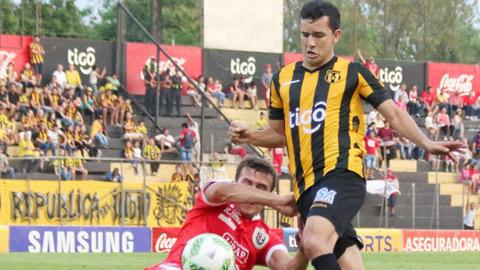 Guarani vs Gremio, 05h30 ngày 21/4: Sân nhà định ngôi đầu