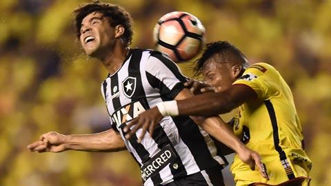 Botafogo vs Atletico Nacional, 07h45 ngày 19/5: Ngôi đầu vẫy gọi